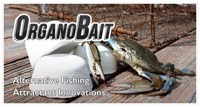 OrganoBait: Synthetic Crab and Lobster Bait Alternative