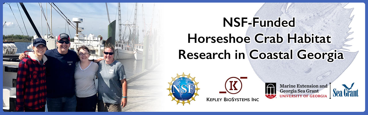 HSC-research-banner